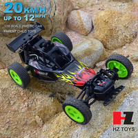 Hobby pro rc car 1:16 model car with the price of petrol rc car