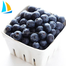 Naturally IQF Frozen Sweet Blueberry sale to all over the world