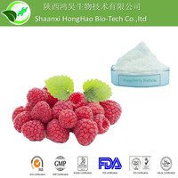 High Quality 99% raspberry ketone white powder raspberry fruit extract