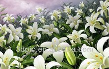 High resolution fashion wall decorative 3d picture of beautiful flower lily