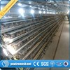 New Design good quality metal quail cage for sale(manufacturer factory)