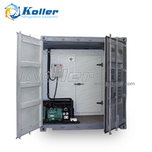 Koller Cold Storage Room with 20feet Container (JVCR20)