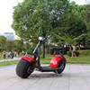 2017 Christmas Gift Citycoco 2 wheel Two wheel adult electric motorcycles