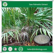Factory price saw palmetto extract ,Fatty acid 25%,45%,60%