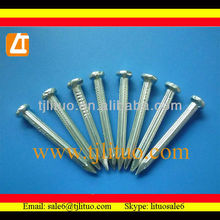 Factory!!! black boiling or galvanized concrete nails