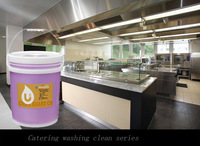 industrial product liquid msds finish dishwasher detergent