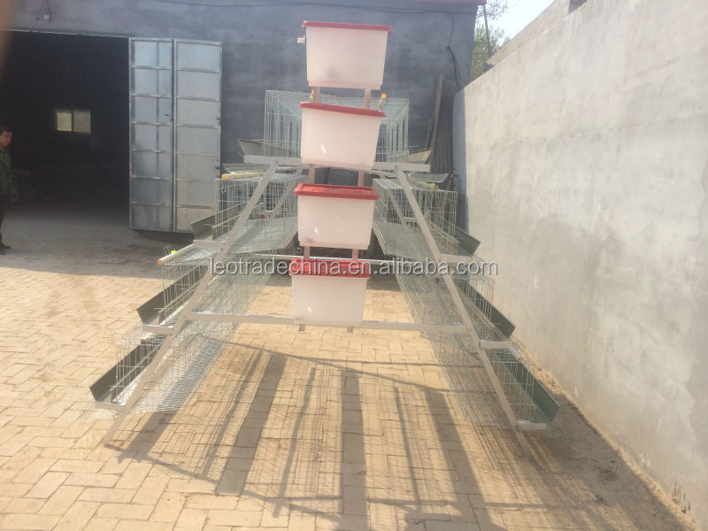 Ghana best selling chicken laying hen cages/chicken layer cage