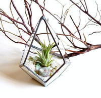 Transparent glass greenhouse plant flower vase fleshy diamond geometry micro landscape handmade copper vase Transparent