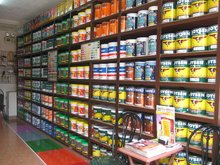 House AND AUTOMOTIVE Paints