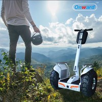 private design 2016 Most Popular 2 Wheel Stand up Electric Scooter, Electric Gyropode, Electric Chariot for adult
