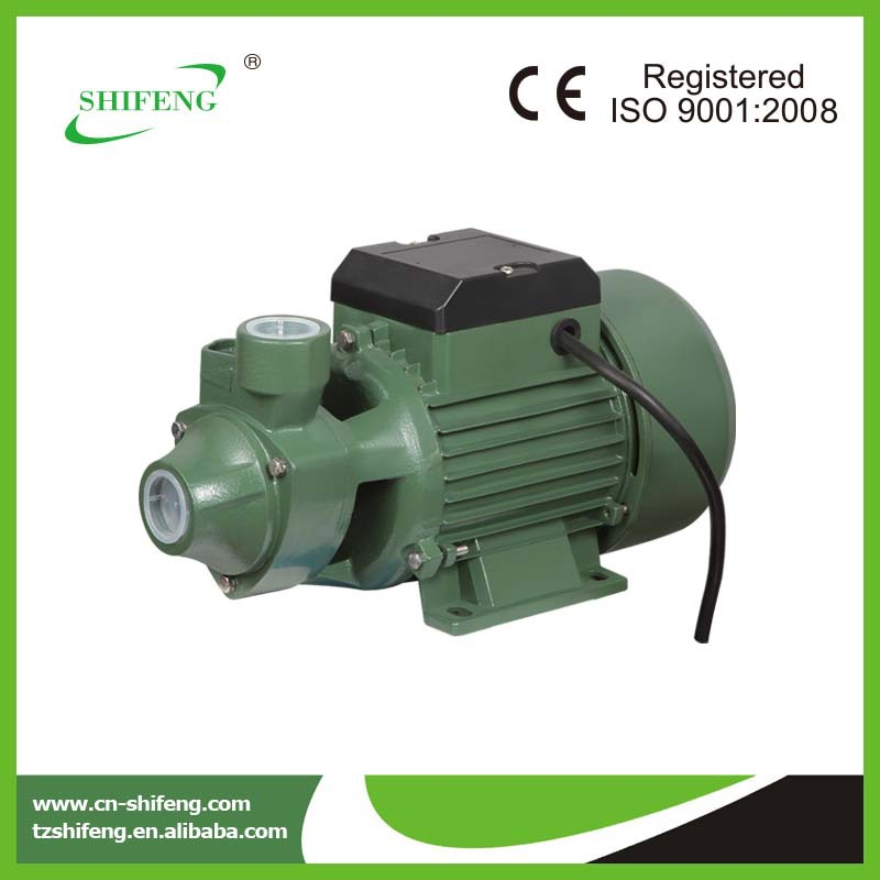 electric ac 220v vortex pump qb 60 70 80