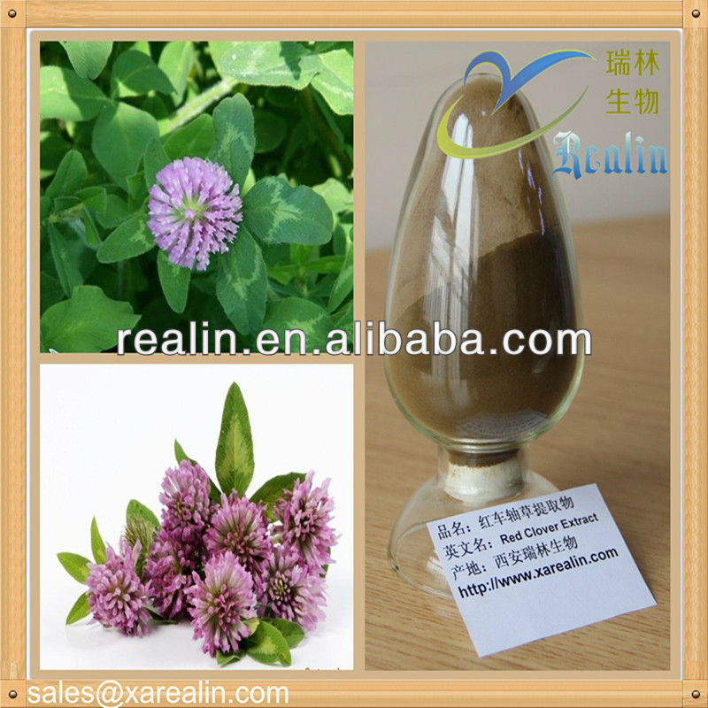Hot Selling Pure Natural Red Clover Extract