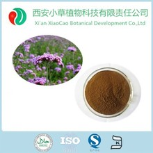 High quality with Herba Verbenae extract/European Verbena Herb Extract/Blue Vervain