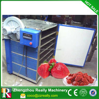 Batch type hot air dryer for coconut meat /coconut dryer machine
