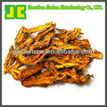 Chinese Goldthread Rhizome Extract Powder with 95% berberine