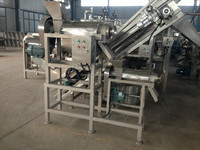 apple processing machine