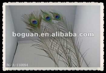 peacock feather for wedding stage decoration