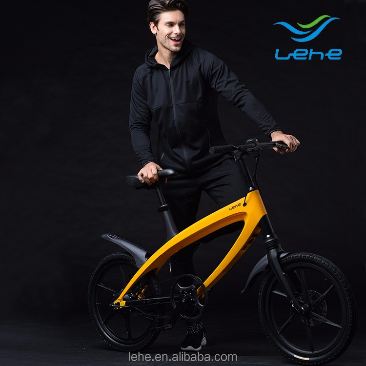 EN/CE/RoHS FCC Qualified Brushless Electric Bicycle 36v 240w Super Version Off-road Long Range