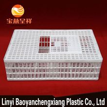 latest professional transport cage laboratory animal layer poultry chicken cage for sale