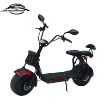 Battery removable CE approved 1000w electro scooter with eec