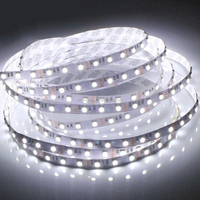 High Quality 12V 24V 5050 Led Strip,SMD 5050 Cool White LED STRIPS Flexible Tape Lights 5m Waterproof Multicolor Car