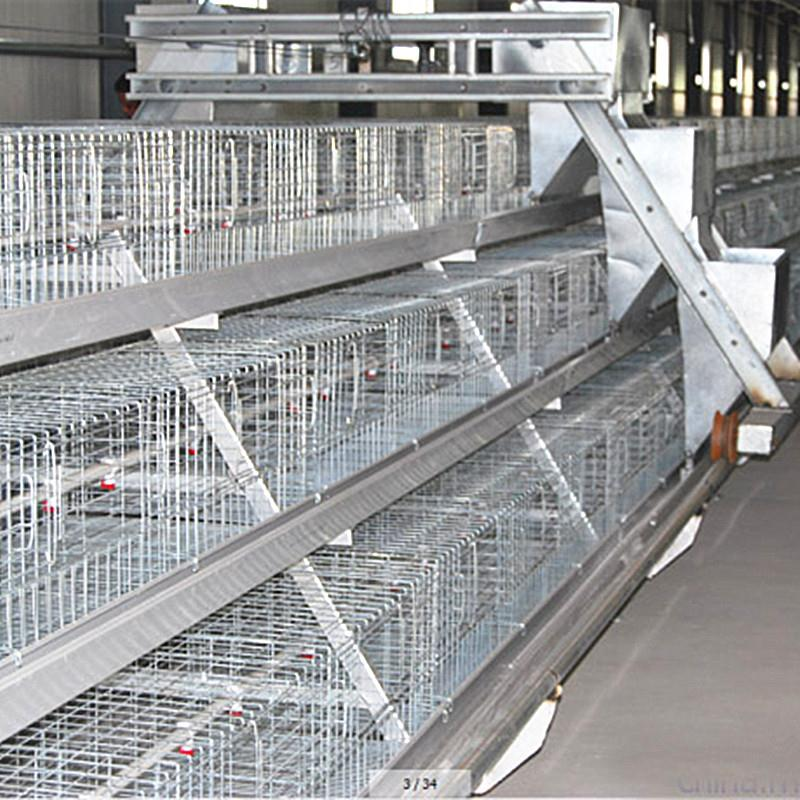 layer poultry rearing cages factory