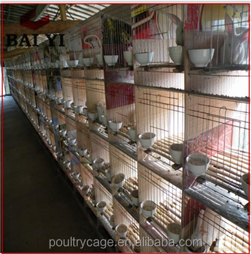 Cheap Coustomized Welded Rabbit Cage Wire Mesh With Plastic Rabbit Cage Trays