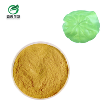 SR High Pure Lotus Leaf Extract / Slimming Tea /Organic Lotus Leaf Extract Powder Manufacturer