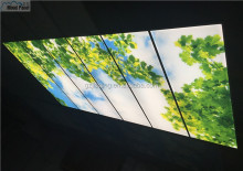 unique LED indoor decorative illumination sky ceiling panel light