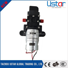 Motor power sprayer pump/small diaphragm pumps/small electric water pump