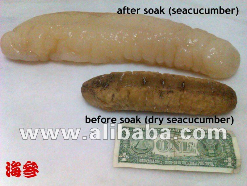 Dry Seacucumber
