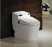 750C electronic bidet full intelligent toilet floor mounted