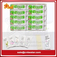 5 Sticks Mint Sugar Free Chewing Gum