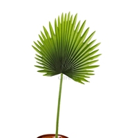 Factory Price High Quality Environmental Plastic Palm Leaf Decorative Artificial Fan Tree Leaves Hot Sale