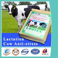 dairy feed mix for anti-stress for lactation cows