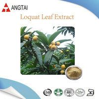 Organic Corosolic acid from Loquat Leaf Extract/Corosolic acid powder with good price