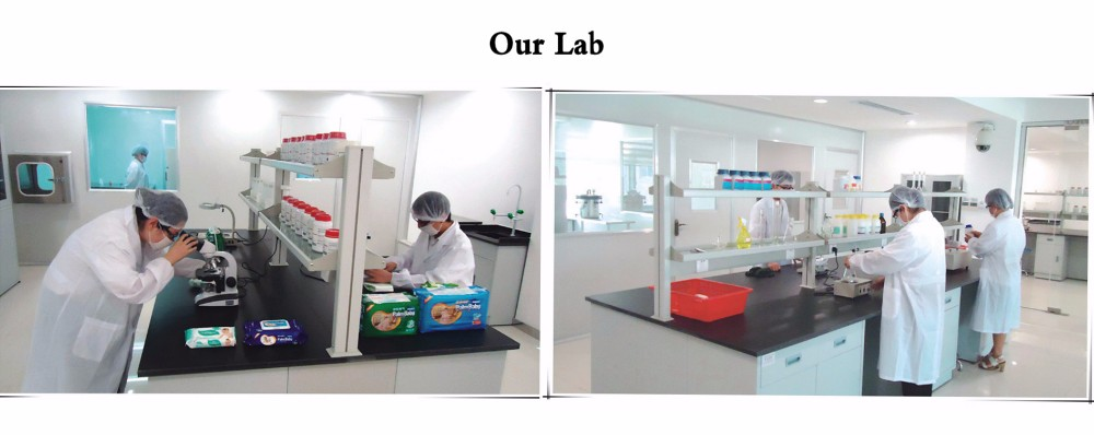 Our Lab