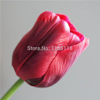 Free shipping ( 12 pcs/lot) fragrance seven-color PU Tulip artificial flowers with high quality tulip artificial flowers
