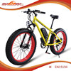 500W 48V green power rider electric bike/electric bicycle S19
