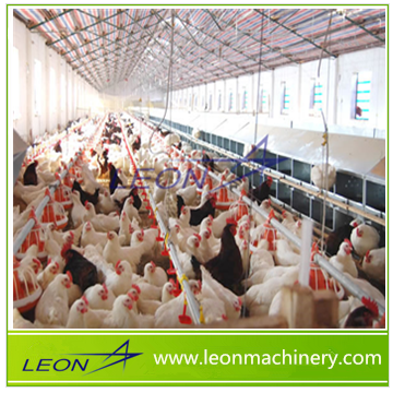 LEON complete controlled automatic poultry chicken farm Equipment for broiler