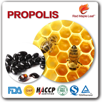 Strengthen Immunity Pure Organic Bee Propolis Powder Soft Capsule