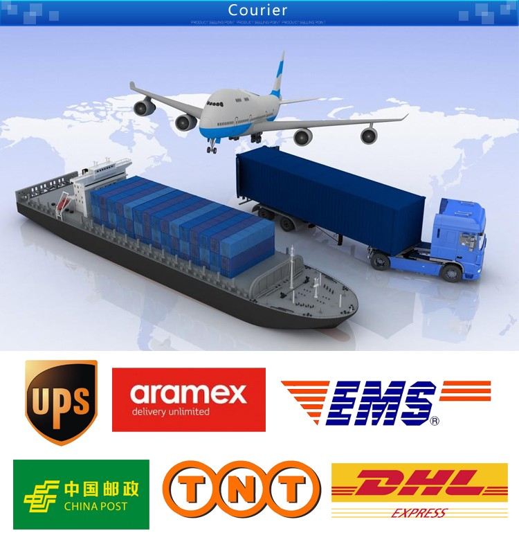 Hot Sell dhl service air freight rates to netherlands
