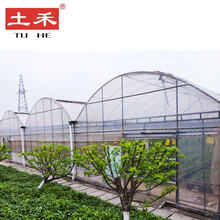 Foshan Economic garden building Agricultural equipment Greenhouses