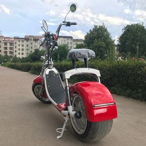 2017 Year Hot sale New Model 1500W Motor Fat Tire Mobility Big Citycoco Electric scooter