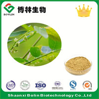 Supply Bulk Underleaf Pearl / Phyllanthus Urinaria / Common Leaf Flower Herb Extract Powder