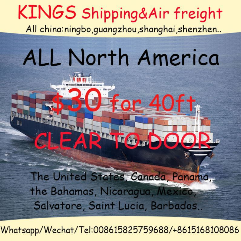 Logistics/Forwarding/Shipping/Sea And Air Freight Services From China To India