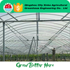 Good Quality Multi Span Agriculture Commercial