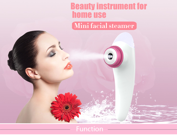 CE, RoHS certificate mini Facial steamer moisturizing/repairing/whitening skin beauty machine