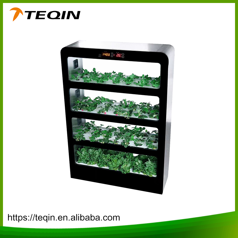 Hydroponics Vegetable WALL FARM INDOOR VERTICAL GARDEN
