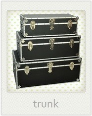 Decorative snakeskin faux leather storage trunk with metal handle